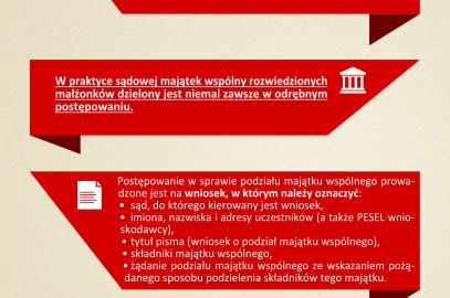 Podział majątku – infografika