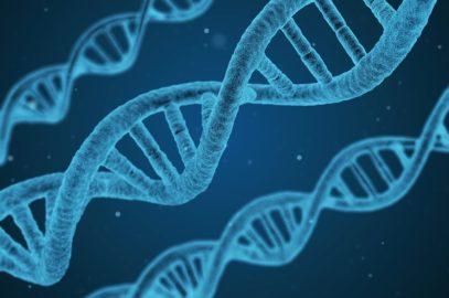 Ojcostwo względem dziecka poczętego metodą in vitro